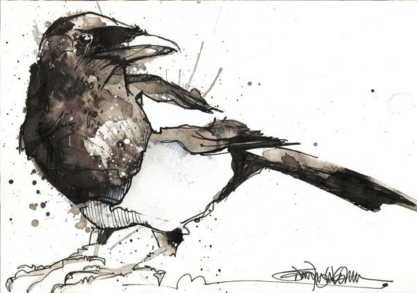 Magpies by Jennifer Kraska, via Behance