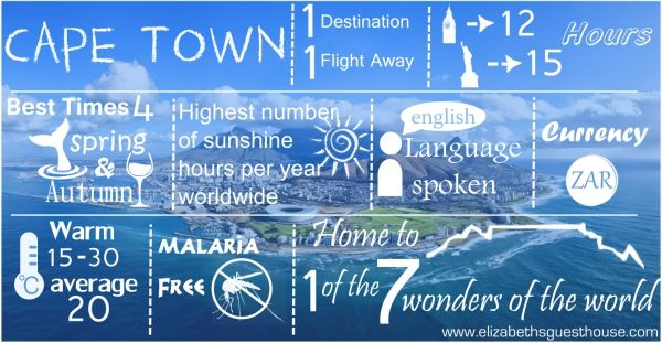 We love Cape Town and here is an Infographic to prove it!