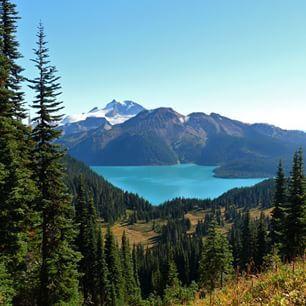 Panorama Ridge Hike, Squamish, BC, Canada   16 Of The Most Beautiful Hikes On The West Coast