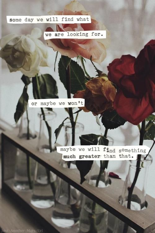 Quotes About Roses And Love Tumblr : ... than that. Sayings, Inspiration, Life, Quotes, Roses Quote, Flower