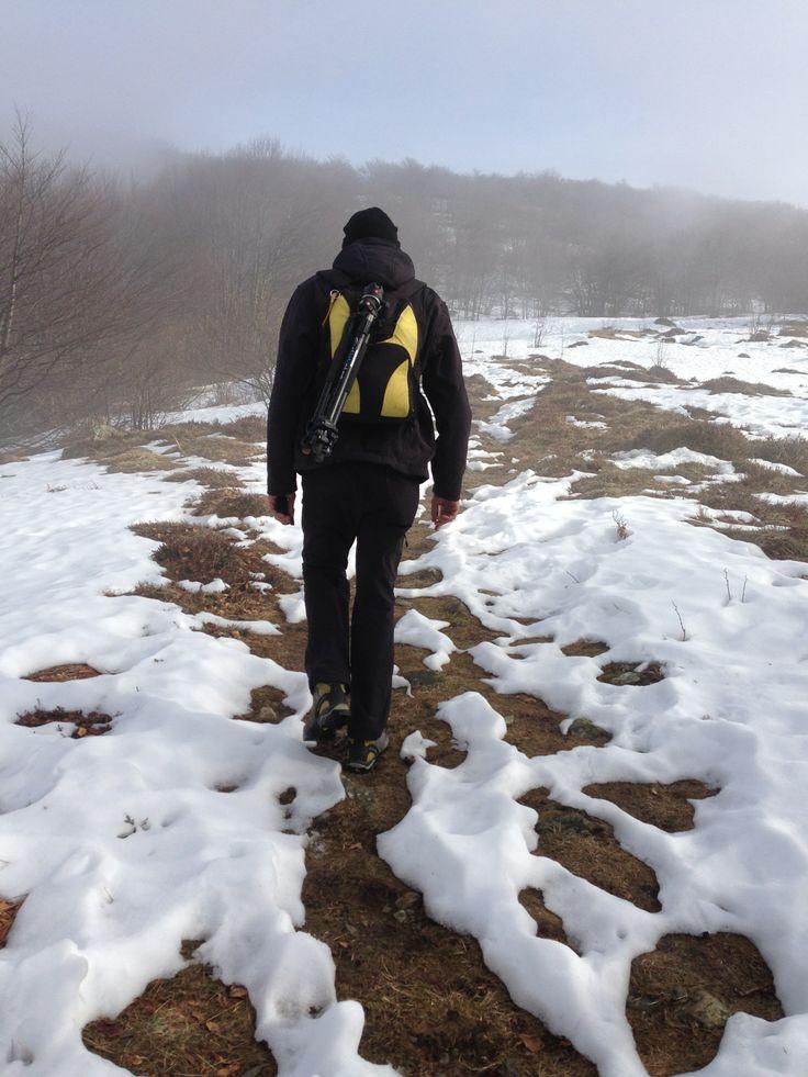 Alta Via dei Monti Liguri camminando verso il Monte Rexia