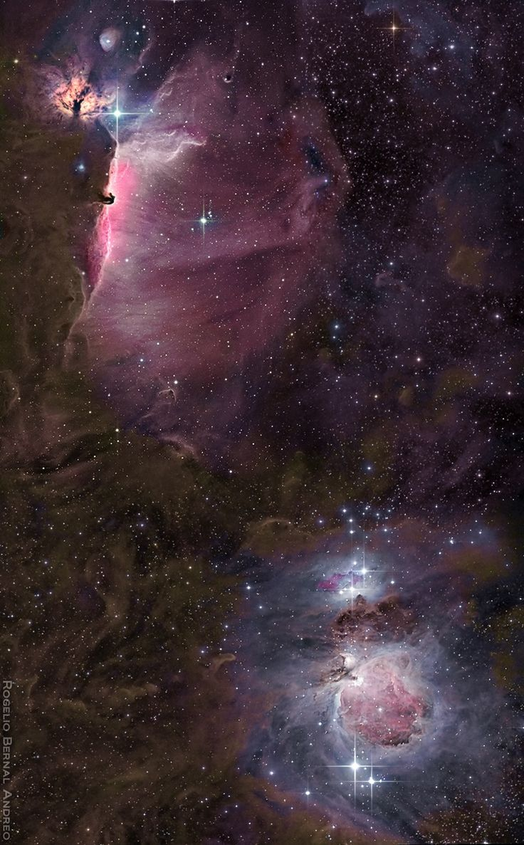 The flame, horsehead and orion nebulae