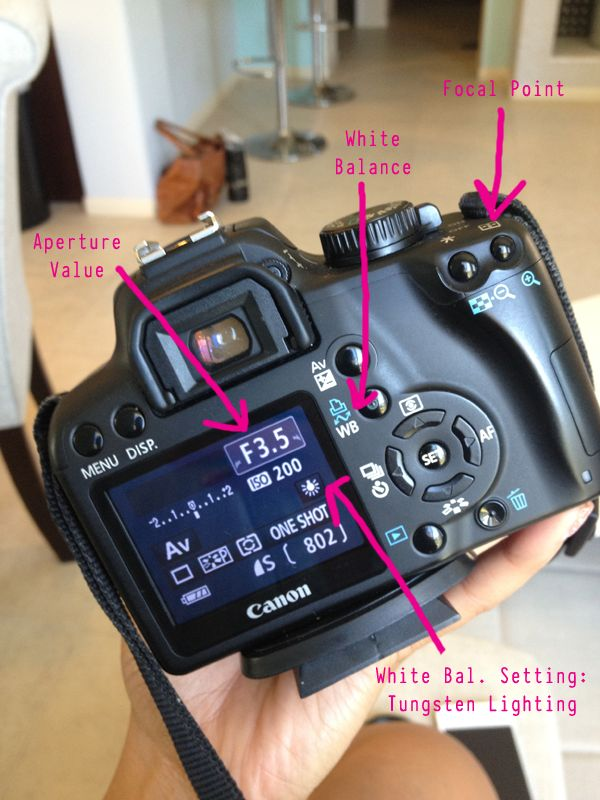how to choose a digital camera for beginners