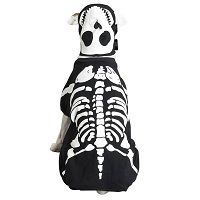 Glow Bones Dog Halloween Costume  Price €18.99 [£16.52]