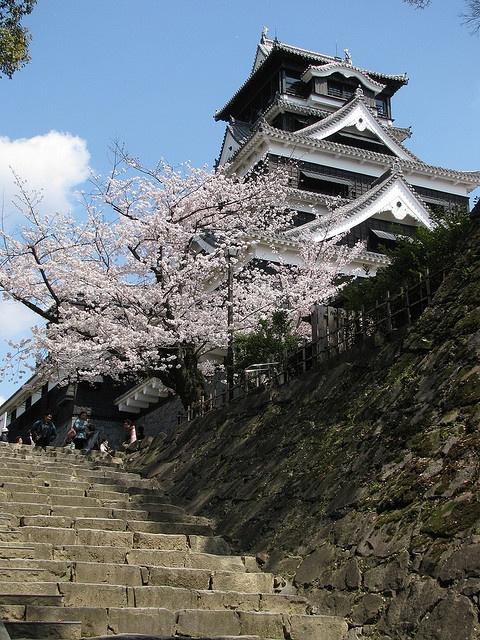 Kumamoto Castle, Japan。熊本城。