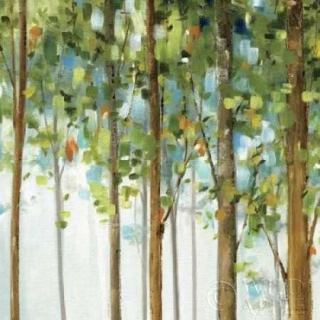 Posterazzi Forest Study III Canvas Art - Lisa Audit (24 x 24)