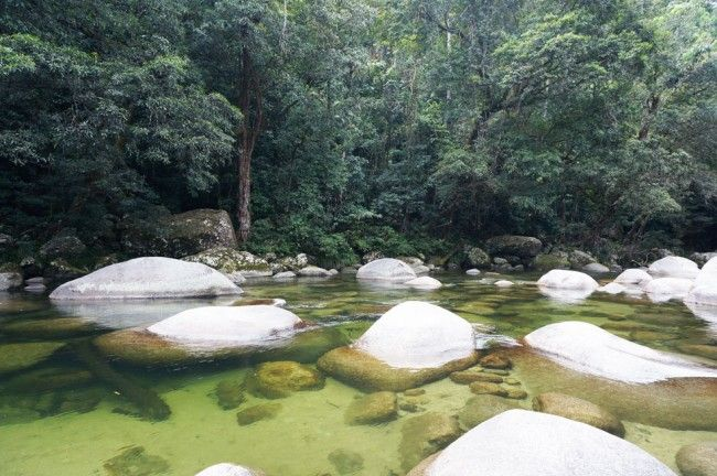 Mossman Gorge, Daintree Region is such a serene place to take a swim, easily accessible for kids.