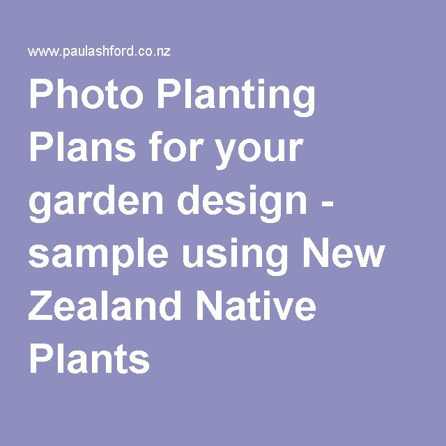 Photo Planting Plans for your garden design - sample using New Zealand Native Plants