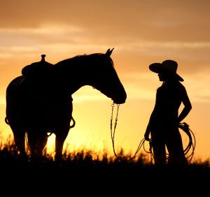 Cowgirl Walking Horse 2