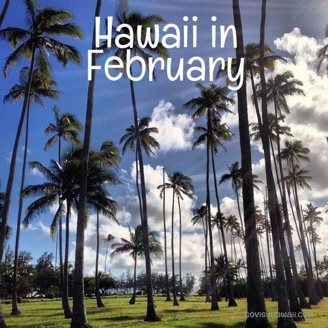 When should you plan to visit Hawaii? Is February a good month for a Hawaii vacation? We'll explore all the important factors -- weather, crowds, hotel prices, and special events -- to help you decide if February suits your needs and desires for a Hawaii vacation. What's the weather like in...