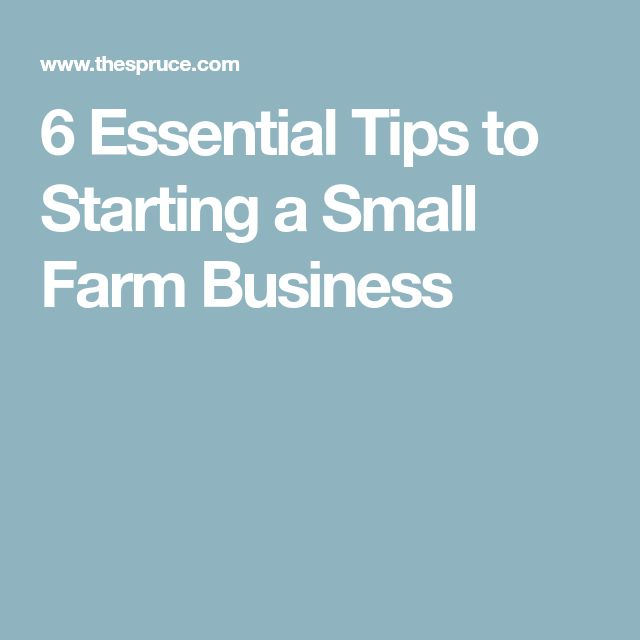 6 Essential Tips to Starting a Small Farm Business