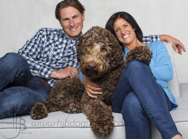 couple on couch in studio with their 1 year old labradoodle dog