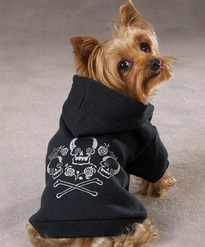 For Royal Pets With Attitude Zack Zoey