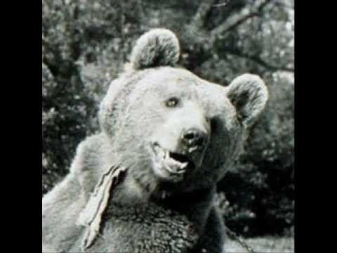 Wojtek the Soldier Bear II CORPS POLISH - WWII -