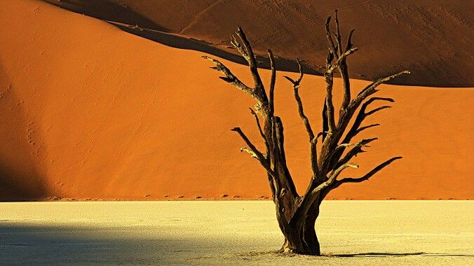 Namibia, sossusvlei. By Andrew Metcalf Photography