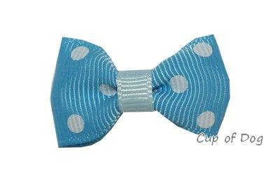 Barrette Dot bleu https://www.cupofdog.fr/accessoire-soin-chihuahua-petit-chien-xsl-245.html
