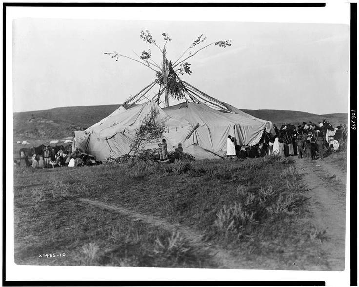 Sun dance in progress - Cheyenne (c1910). Photograph by Edward S. Curtis.