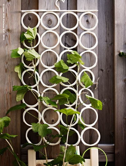 Retire KOMPLEMENT multi-use hanger from belts, scarves and ties and use it as  a support for climbing vines and plants.