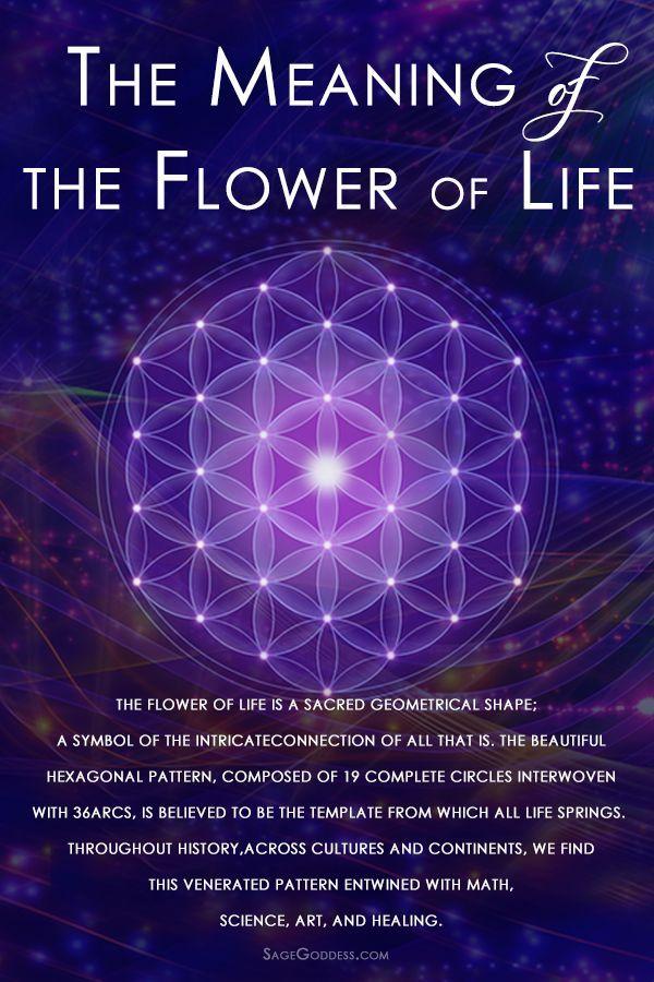 Flower Of Life Meditation For Universal Love Sacred