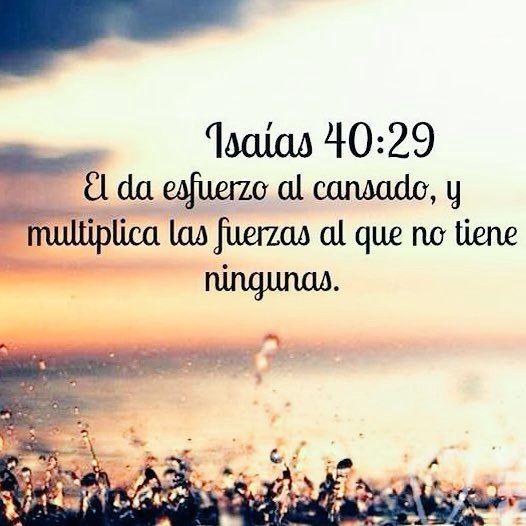 Isaias 40:29 Biblia