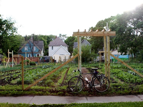 Vacant lots turned into local gardens right in the city.  http://www.kickstarter.com/projects/600855877/vacant-lots-to-vibrant-urban-farms