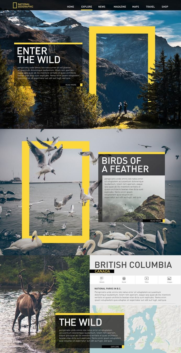 Poster design site - Really Cool Web Design Love The Use Of The National Geographic Yellow Graphic To Tie This Together Such A Recognizable But Simple Gesture