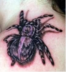 Because I'm not terrified of spiders or anything of the sort. >>
