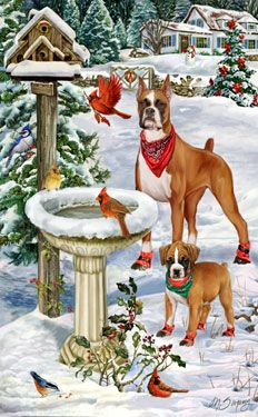 """Boxer Christmas Holiday cards are 8 1/2"""" x 5 1/2"""" and come in packages of 12 cards. One design per package. All designs include envelopes, your personal message, and choice of greeting. Select your greeting from the drop-down menu above.Add your personal message to the Comments box during checkout."""