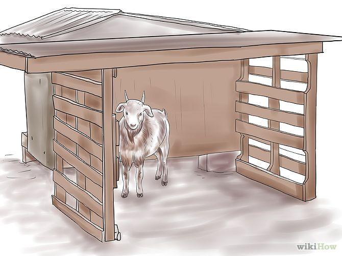 Картинка домик козлят