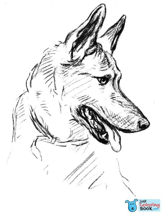 German Shepherd Dog Portrait Coloring Page Free Printable With