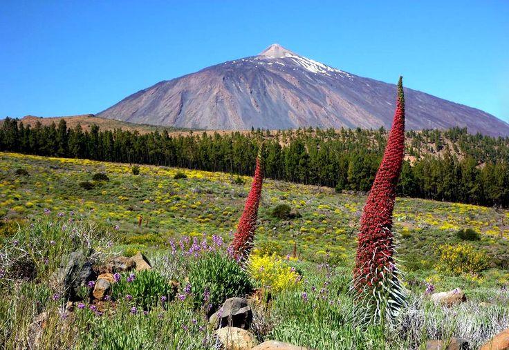 връх тейде, тенерифе, канарски острови