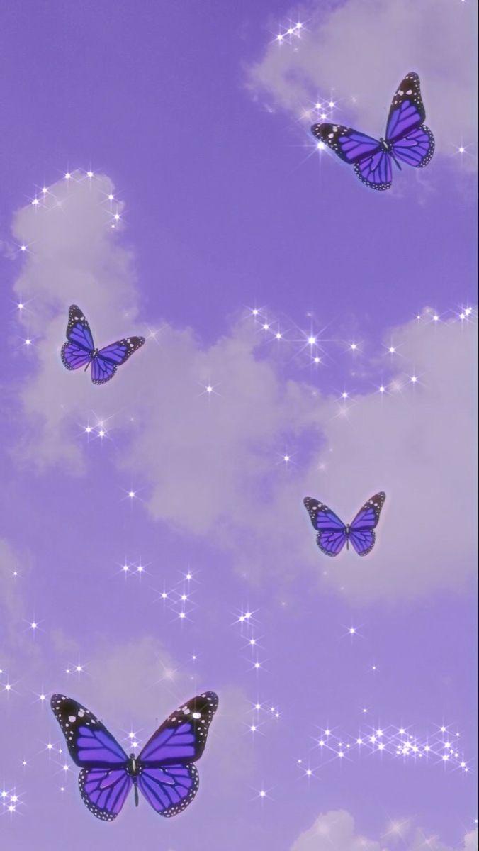 Cute Butterfly Wallpaper Purple Butterfly Wallpaper Butterfly Wallpaper Iphone Butterfly Wallpaper