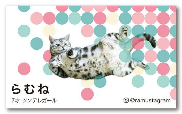 ペット名刺 猫デザイン 横型023<br> オーダーメイド 猫グッズ (1個50枚入)