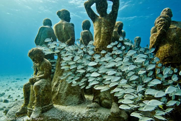 La Evolución Silenciosa (The Silent Evolution) - underwater sculptures by Jason TaylorCancun Mexico, Jason Decaires, Sculpture Projects, Coral Reef, Decaires Taylors, Silent Evolution, The Ocean, Living Reef, Underwater Sculpture