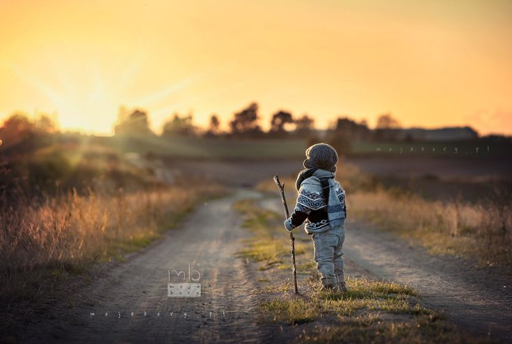 towards the sun by Moje Bory on 500px