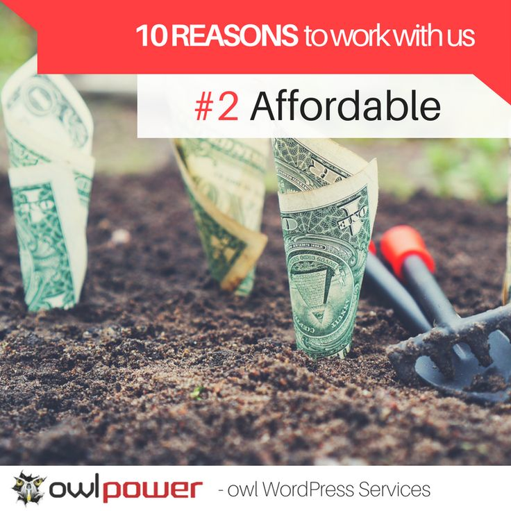 Invest in your business! At owl power we make costly services affordable to everybody. https://owlpower.eu/