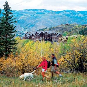 America's Best Dog-Friendly Hotels - Articles | Travel + Leisure
