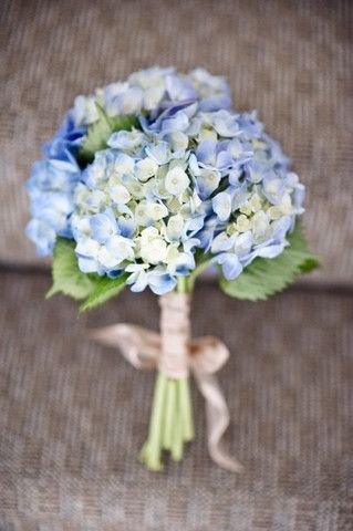 This single-variety wedding bouquet consists of blue hydrangeas. Hydrangeas make perfect bouquets because they fill in space, and look round and full without needing so many stems. #weddingbouquet #hydrangeas