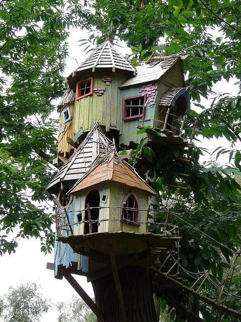 "Like to live here? ""Bewilderwood"" - Norwich"