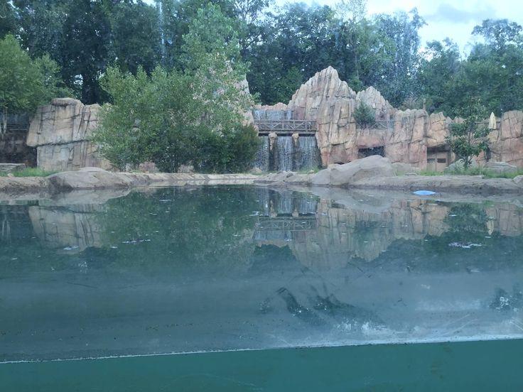 8/14/2016 - Grizzly Bear Habitat
