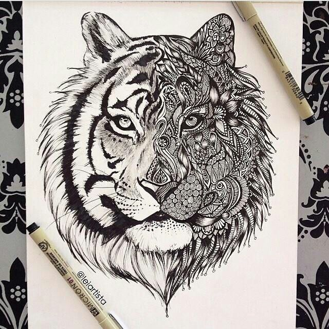 tangled tiger ~ Pin Zentangle Lion Tattoos Pinterest And Art on Pinterest 640 x 640