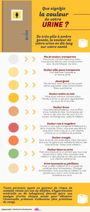 Couleur urine | Piktochart Infographic Editor