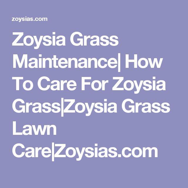 Zoysia Grass Maintenance| How To Care For Zoysia Grass|Zoysia Grass Lawn Care|Zoysias.com