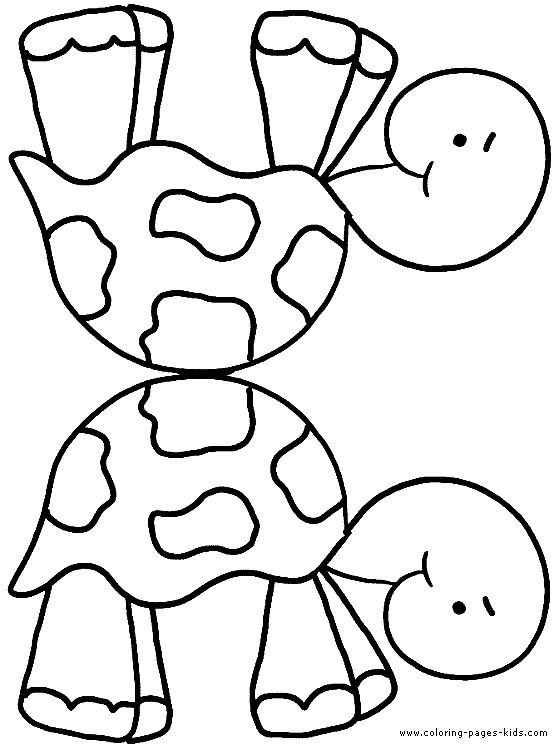 Turtle color page print your favorite coloring pages from our huge collection of free animal coloring pages print coloring pages