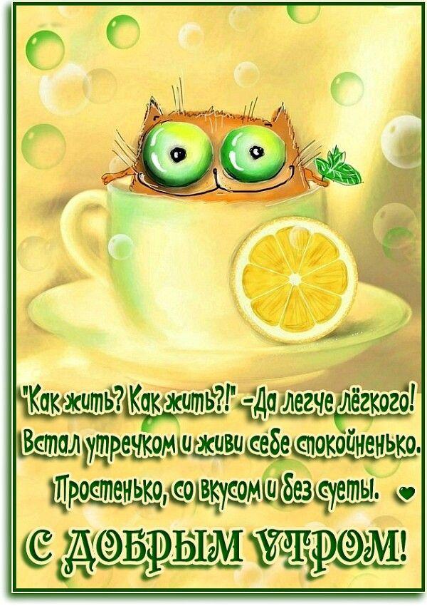 участников позитивные открытки с юмором доброе утро если хотите
