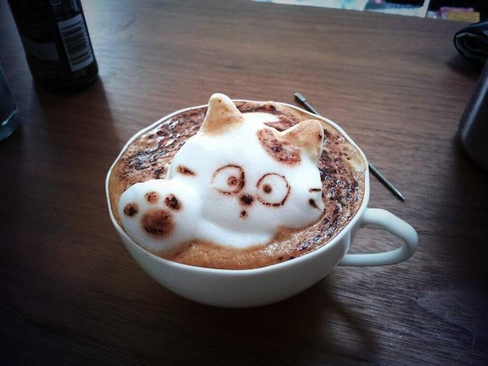 The Curious Kitty  The Incredible 3D Latte Art By Kazuki Yamamoto Will Amaze You All • Page 5 of 6 • BoredBug