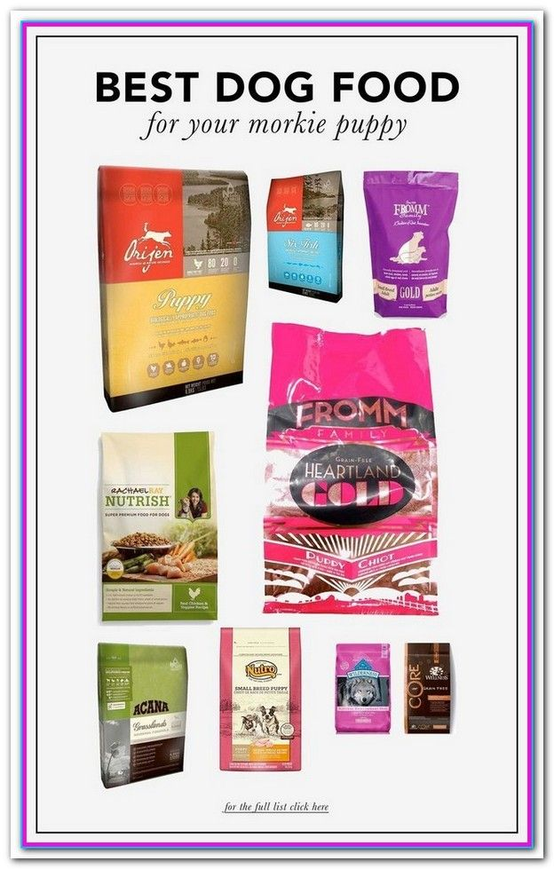Best Dog Food Brand For The Money Whats The Best Dog Food A List