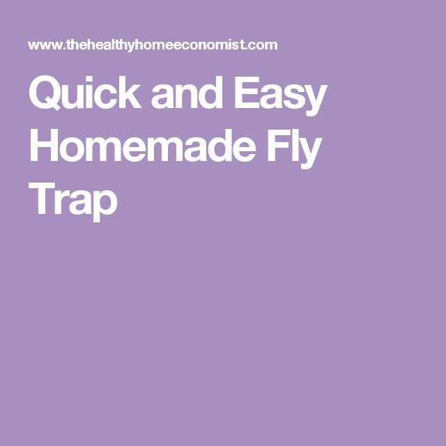 1000 Ideas About Fly Traps On Pinterest Fruit Fly Traps