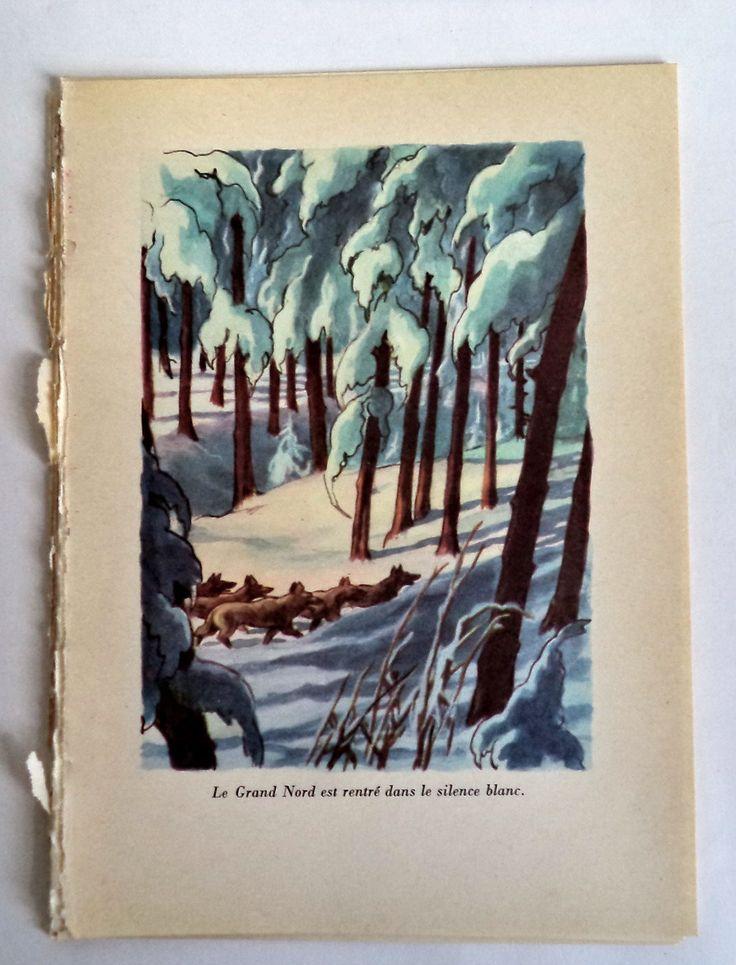 Original Retro Print Yukon Wolves Winter Scene, Retro,  Animal Print, Yukon, Wolf, forest Scene,  Arctic Exploration, kids room decor, art by MushkaVintage3 on Etsy