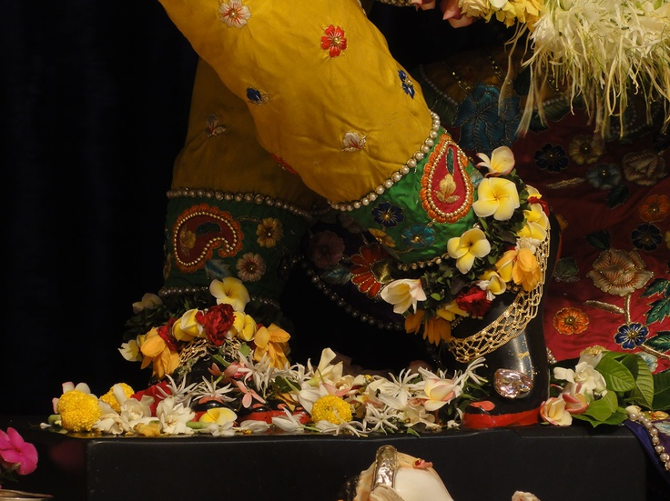 Madhava's lotus feet, Mayapur